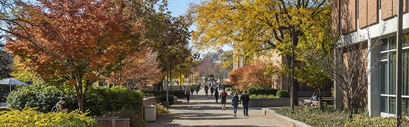 photo of students walking on campus